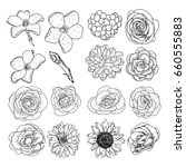 set of flowers  black and white ... | Shutterstock . vector #660555883