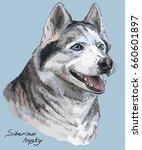 vector colored portrait of... | Shutterstock .eps vector #660601897