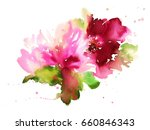 flowers watercolor illustration.... | Shutterstock . vector #660846343