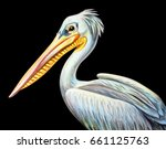 Pelican Portrait Realistic...
