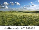 wheat field | Shutterstock . vector #661144693