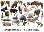 set of different african... | Shutterstock . vector #661567087