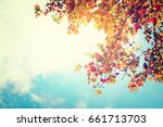 beautiful autumn leaves and sky ... | Shutterstock . vector #661713703