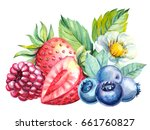 berries strawberry  raspberry ... | Shutterstock . vector #661760827