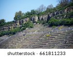 Small photo of Viticulture in a steep position