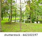landscape stream in the green... | Shutterstock . vector #662102197
