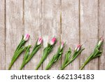 Ornament Of Pink Tulips On...