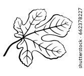 fig tree leaf black pictogram ... | Shutterstock . vector #662378227