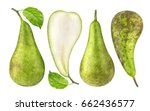 pear isolated. green conference ... | Shutterstock . vector #662436577