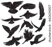 set of isolated flying birds... | Shutterstock .eps vector #662634007