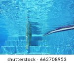 Underwater Shot Of Legs Walkin...