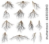 set of tree roots. vector... | Shutterstock .eps vector #663010843