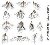 set of tree roots. vector...   Shutterstock .eps vector #663010843