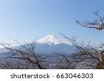 fuji mountain and tree... | Shutterstock . vector #663046303