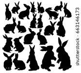 rabbit silhouette  vector ...   Shutterstock .eps vector #663146173