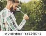 young winemaker tasting red...   Shutterstock . vector #663245743