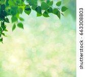 abstract seasonal backgrounds... | Shutterstock . vector #663308803
