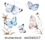 illustration of watercolor... | Shutterstock . vector #663360217