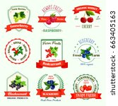 berries icons or berry jam or... | Shutterstock .eps vector #663405163