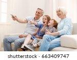 positive inspiring couple... | Shutterstock . vector #663409747