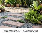 simple pathway in home garden...   Shutterstock . vector #663502993