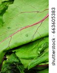 Small photo of beet green leaves