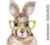 watercolor portrait of rabbit....   Shutterstock . vector #663628153