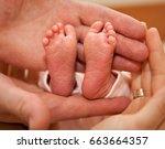 infant heels in  mother's and... | Shutterstock . vector #663664357