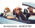 young couple with a dog driving ... | Shutterstock . vector #663814783