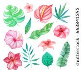 set of watercolor hand painted... | Shutterstock . vector #663841393