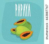 bunch of ripe papaya fruits ... | Shutterstock .eps vector #663887767