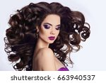 healthy hair. beautiful... | Shutterstock . vector #663940537