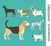 funny cartoon dog character... | Shutterstock .eps vector #664005883