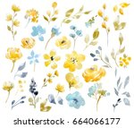 watercolor bright summer floral ... | Shutterstock . vector #664066177