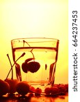 paradise cherry   Shutterstock . vector #664237453