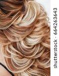 close up detail of greek braid... | Shutterstock . vector #664263643