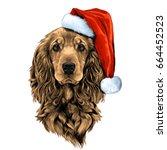dog breed cocker spaniel face... | Shutterstock .eps vector #664452523