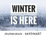 winter is here text with winter ... | Shutterstock . vector #664546687