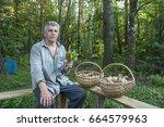 In Summer  In A Birch Forest  ...