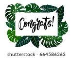 congrats hand written lettering.... | Shutterstock .eps vector #664586263