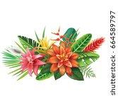 arrangement from tropical... | Shutterstock .eps vector #664589797
