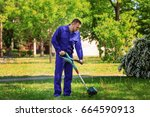 young worker mowing lawn with... | Shutterstock . vector #664590913