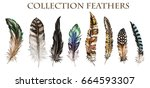 Watercolor Collection Of...
