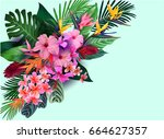 vector tropical flowers and... | Shutterstock .eps vector #664627357