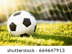 closeup soccer ball on green... | Shutterstock . vector #664647913