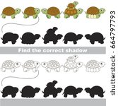 turtles set to find the correct ... | Shutterstock .eps vector #664797793