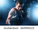 portrait of muscular boxer in... | Shutterstock . vector #664900213