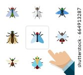 flat icon buzz set of housefly  ... | Shutterstock .eps vector #664913287
