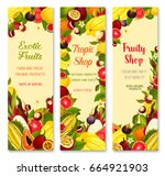 exotic fruits banners for shop. ... | Shutterstock .eps vector #664921903