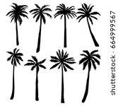 palm silhouette  vector ... | Shutterstock .eps vector #664999567